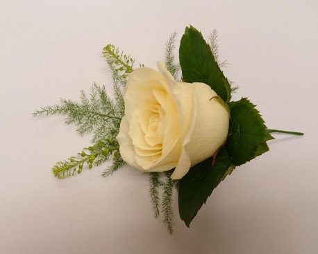 White avalanche rose buttonhole