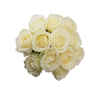 Compact Rose Bride Posy