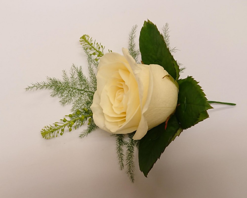 White avalanche rose buttonhole