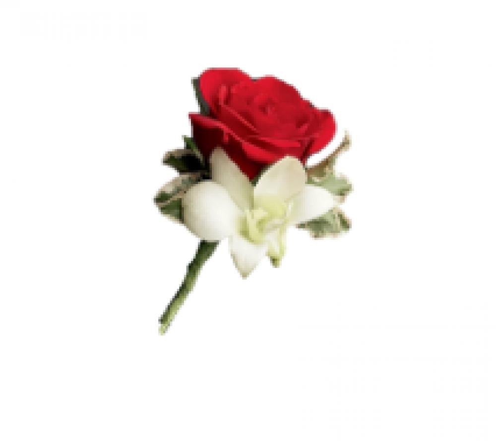Rose & Orchid Buttonhole
